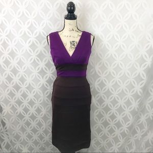 Maggy London Purple Colorblock Sheath Dress